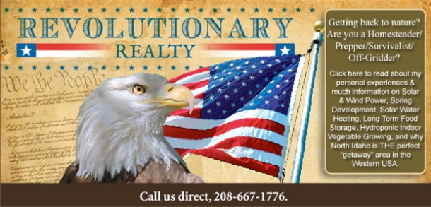 Click here to go to Revolutionary Realty